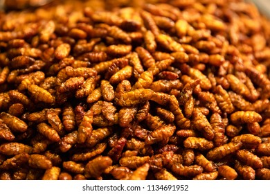 Heap Of Larva For Sale