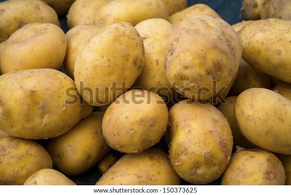 Heap of potatoes, background.