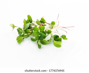 Heap of radish micro greens on white background. Healthy eating concept.