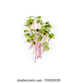 Heap of radish micro greens on white background. Healthy eating concept of fresh garden produce organically grown as a symbol of health and vitamins from nature. Microgreens closeup.