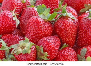 heap of red ripe strawberry