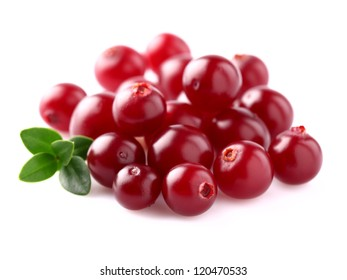Heap of ripe cranberry