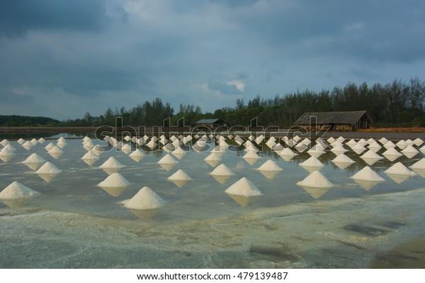 Heap of sea salt in a farm prepared for harvest, Chanthaburi, Thailand.