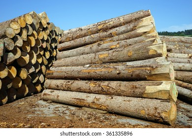 Heap of timber in storage neat factory, Switzerland