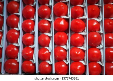Heap of tomatoes on wholesale market, packed in crates and ready to be sold