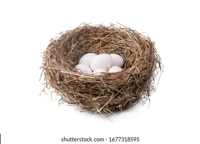 Heap of white eggs in a straw nest on a white background