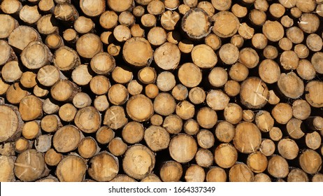 heap of wood background, trunk, grain, mountain,pattern,natural,montain