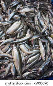 Heaps of  fresh smelt fish