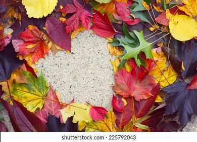 Heart in autumn leaves on the sidewalk.  Main focus on the leaves