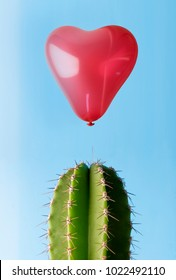 Heart balloon floating above cactus spike showing the fragility of love