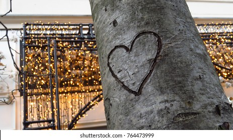 Heart Carved into Tree with Lights in the Background