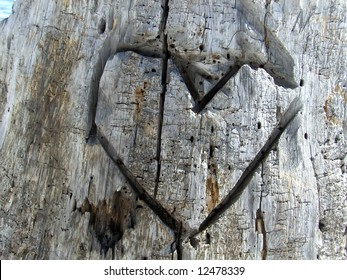 A heart carved in a tree stump