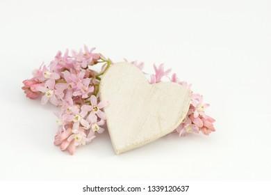 heart and flower lying on white