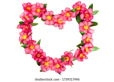 Heart frame made of pink tropical flowers. Isolated on white background.