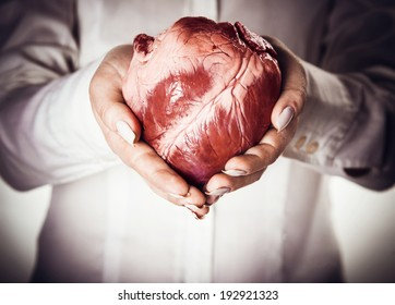 heart in hands, abstract creative background