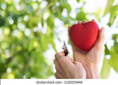 Heart in hands doctor on green background healt hcare service