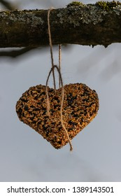 Heart made of birdseed on a branch