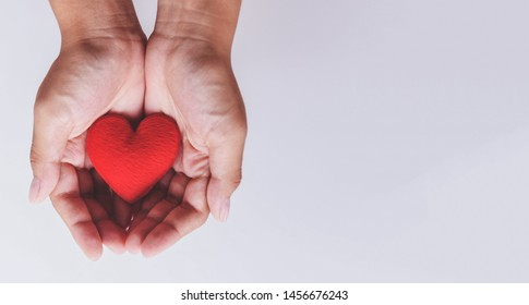 heart on hand for philanthropy concept / woman holding red heart in hands for valentines day or donate help give love warmth take care , World Health Day