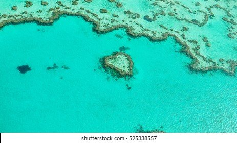 Heart Reef at the Great Barrier Reef, Queensland in Australia