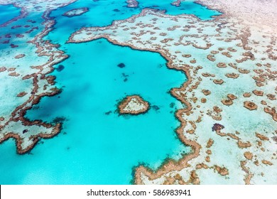 Heart Reef in the Whitsundays Queensland Australia