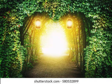 Heart road in a fantasy forest with magic light