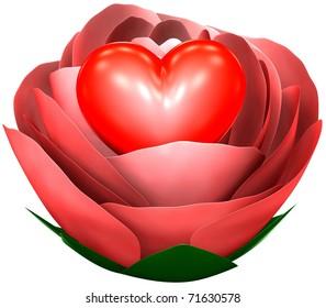 heart in rose
