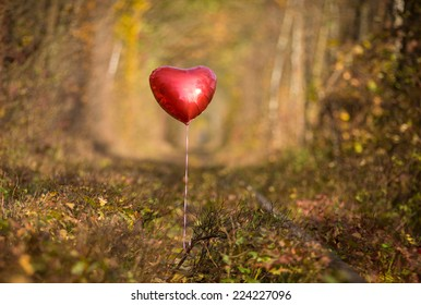 Heart shape balloon in the forest