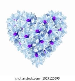 Heart shape of blue light flowers on white background