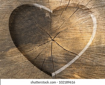 Heart Shape Carved on a Tree Cut