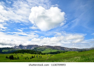 Heart shape cloud with blue sky and green meadow in bright sun light