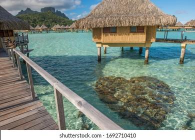 Moana Images Stock Photos Vectors Shutterstock