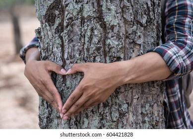 Heart shape handmade around the tree