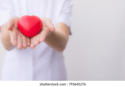 Heart shape in the hands of the nurse.