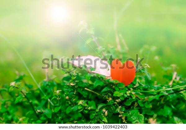 Heart shape in meadow with gree and bright background
