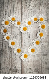 Heart shape of oxeye daisies on distressed wood background