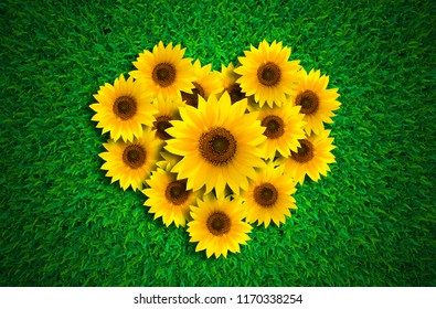 Heart shape with sunflowers on green grass meadow background, top view.
