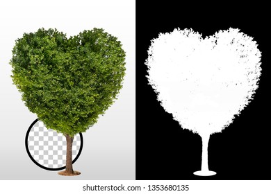 Heart shape tree isolated over a white background with high quality mask alpha channel and clipping path. Suitable for natural articles fine print / architectural design / Decoration work or web page.