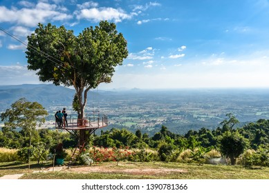 Heart shape tree of love with blue sky and white cloud in summer jungle at Noen Maprang mountain in Phitsanulok Province Thailand.
