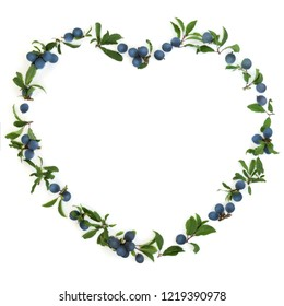 Heart shaped blackthorn wreath on white background also known as blackthorn. Pruna spinosa.