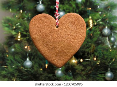 Heart shaped gingerbread cookie with christmas tree background
