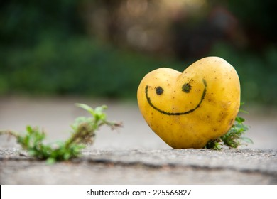 Heart shaped happy potato on the ground, in the yard, looking happy
