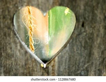 Heart shaped hole on wood