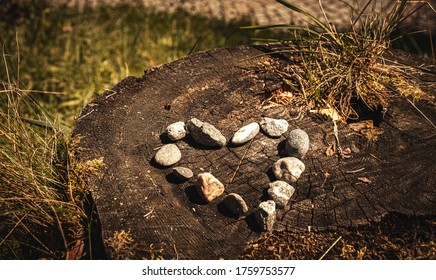 Heart shaped stones on tree stump. Little stones aligned in beautiful heart-shape pattern.