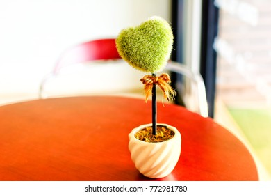 Heart shaped tree in white pot on wood table. Concept of waiting for sombody to marriage proposal or Valentine 's day.