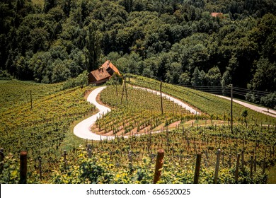 Heart shaped wine road in Spicnik, Slovenia