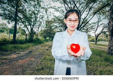 Heart symbol health in woman hand,Close up red heard in hand