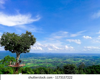 The heart tree of love scenery in The valley hill mountain at sun rise blue sky clouds in Phitsanulok , in the north part of Thailand. This is landmark of love nature for lover.