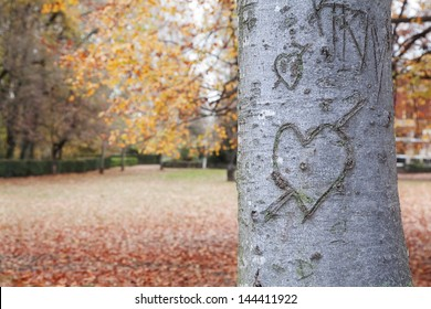 Heart-shape on trunk bark with a autumnal background