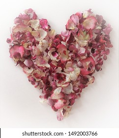 Heart-shaped arrangement of dried flower petals on white background