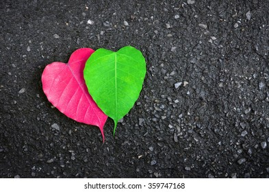 Heart-shaped leaves pink and green on a black background,Autumn hearts for love.